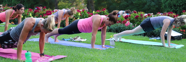 Participants do the plank in Fitness in the Park